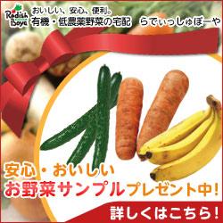安心・おいしい お野菜サンプル プレゼント中!