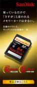 SanDisk 使っているだけで「さすが」と思われるメモリーカードは少ない。