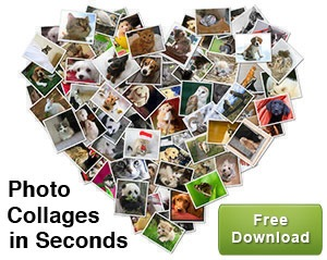 Photo Collages in Seconds2
