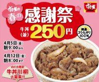 「すき家の春の感謝祭」牛丼(並)250円